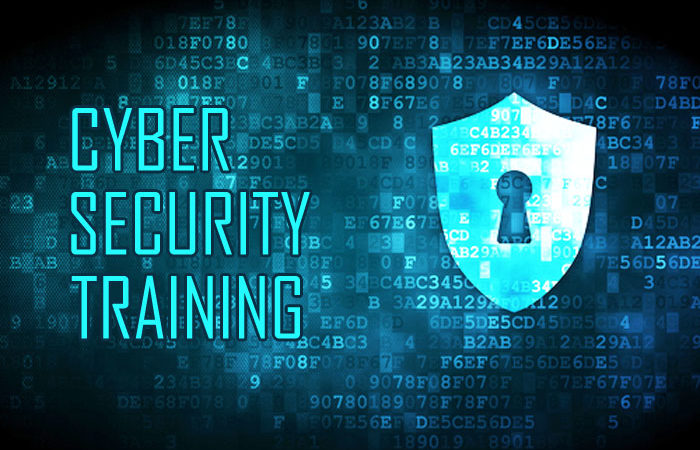 For $200, you will learn any aspect of cybersecurity in our portal