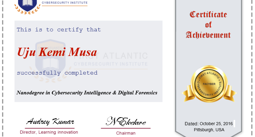 First Atlantic Cybersecurity Institute (Facyber) is looking for African Growth Partners