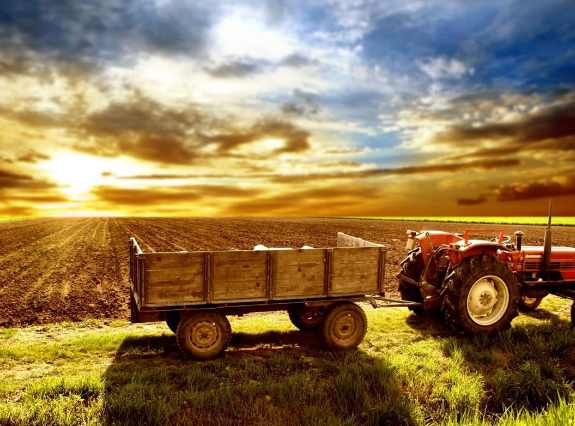 Six areas where agtech is transforming agriculture and the world