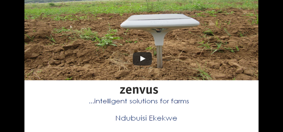 What Is Zenvus?