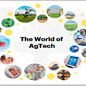 The World of AgTech And Opportunities for African Entrepreneurs