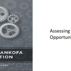 8.0 – Assessing Africa's Opportunities