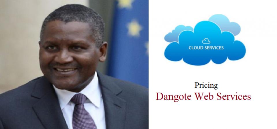 Pricing Dangote Web Services