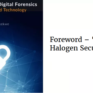Foreword – 'Wale Olaoye, Halogen Security Group