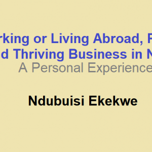 Working or Living Abroad, Pillars to Build Thriving Business in Nigeria