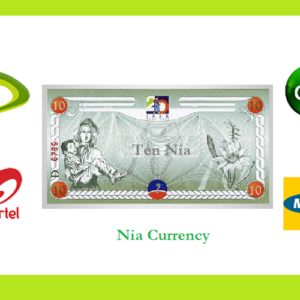 Doubling Revenue for Telcos (MTN, Glo, Etisalat, Airtel) in Nigeria With Nia