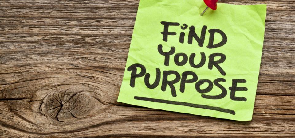 Define Your Career Purpose