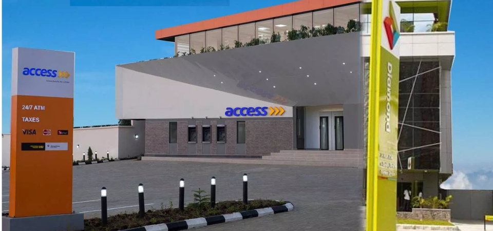 I Will Vote YES for Access Bank to Merge with Diamond Bank