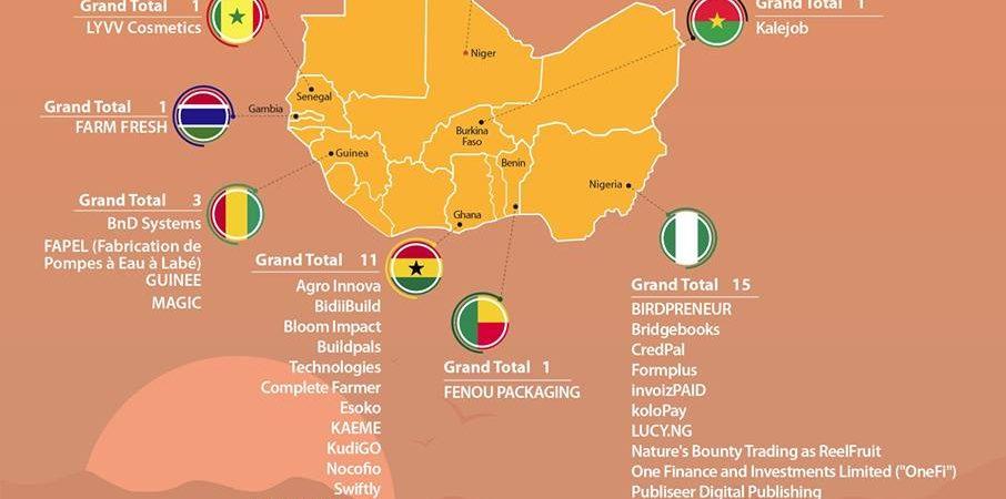 The Next 100 African Startup List – World Bank IFC
