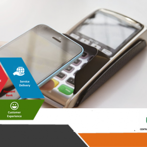 Nigeria's Payment Service Bank Guidelines and Quest for Financial Inclusion
