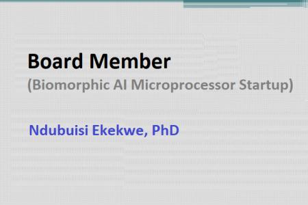 Joins Board of a Biomorphic AI Microprocessor Startup in California