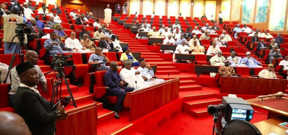 Complete List of 100 Senator-Elects Cleared By INEC – Rochas and Akpabio Not There
