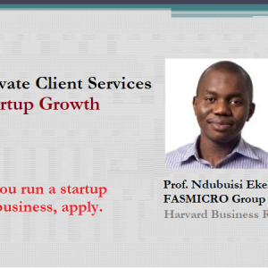 Private Client Services: Startup Growth [Apply]; 24/7 Access to Ndubuisi Ekekwe